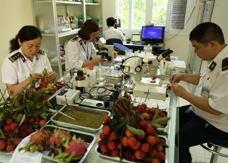 Công chức kiểm dịch thực vật được cấp phát bao nhiêu bộ trang phục, 30/2015/TT-BNNPTNT