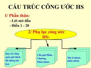 cấu trúc công ước HS