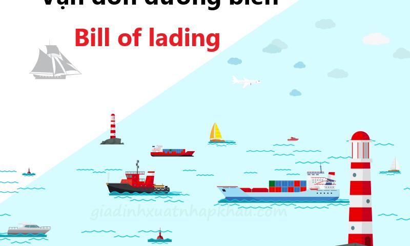 Những lưu ý khi sử dụng vận đơn đường biển