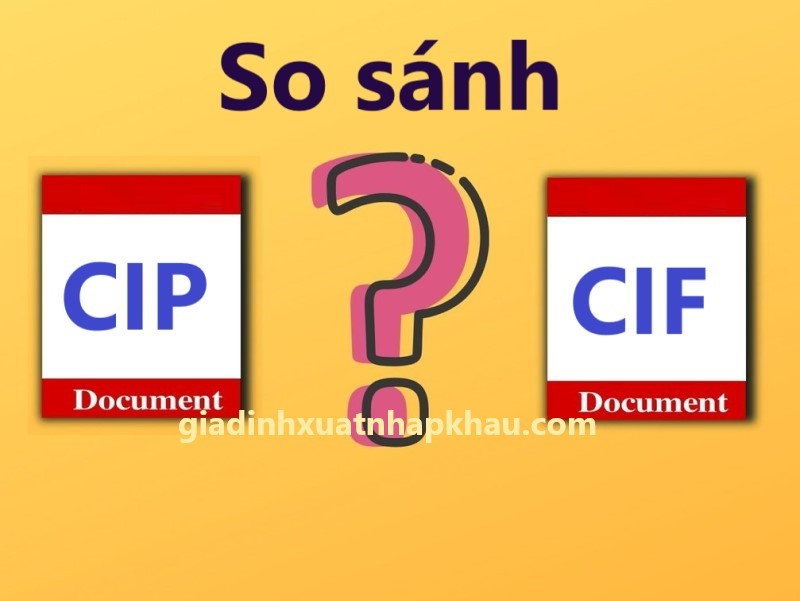 CIP là gì? So sánh CIF và CIP trong Incoterms 2020